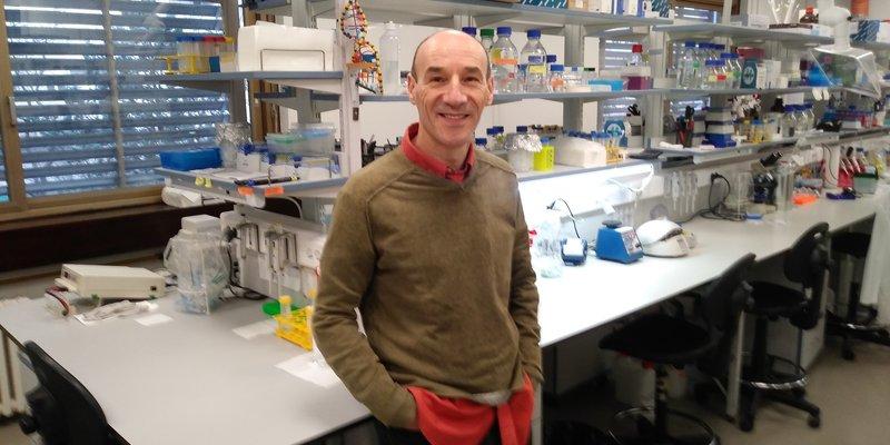Uspješna borba protiv bakterije koja uzrokuje rak želuca