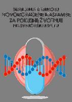 Projektna radionica