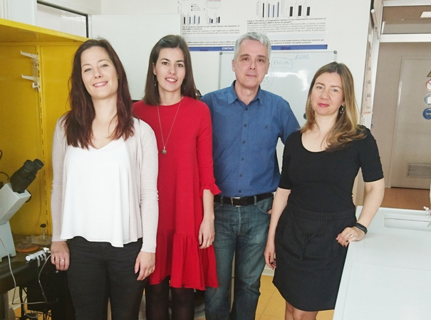Pain Research Group